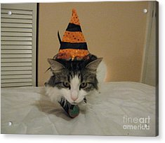 The Cat Is The Witch Acrylic Print by Frederick Holiday