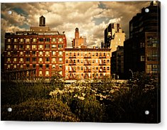 The Chelsea Skyline - High Line Park - New York City Acrylic Print by Vivienne Gucwa