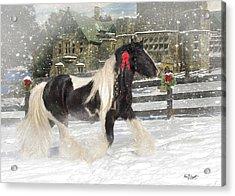 The Christmas Pony Acrylic Print by Fran J Scott