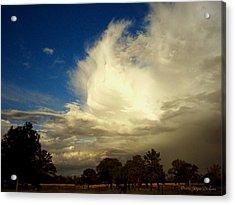 The Cloud - Horizontal Acrylic Print by Joyce Dickens