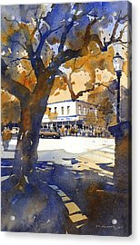 The College Street Oak Acrylic Print by Iain Stewart