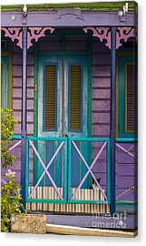 The Color Purple Acrylic Print by Rene Triay Photography