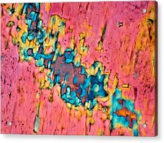 The Crack In The Wall Acrylic Print by Tom Phillips