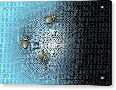 The Darknet Acrylic Print by Carol & Mike Werner