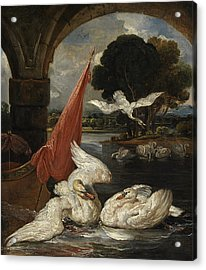 The Descent Of The Swan, Illustration Acrylic Print by James Ward