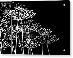 The Dill 3 Version 2 Acrylic Print by Angelina Vick