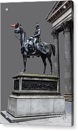 The Duke Of Wellington Goma  Grey Acrylic Print by John Farnan