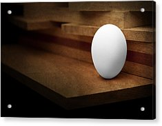 The Egg Acrylic Print by Tom Mc Nemar