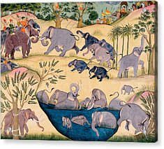 The Elephant Hunt Acrylic Print by Indian School