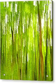 The Emerald Forest Acrylic Print by Bill Gallagher