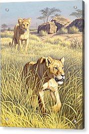 The Example   Acrylic Print by Paul Krapf