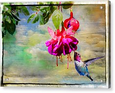 The Face Of Fuchsia Acrylic Print by Lynn Bauer