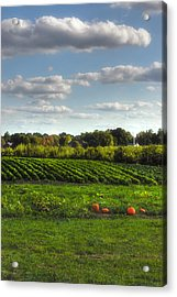 The Farm Acrylic Print by Joann Vitali