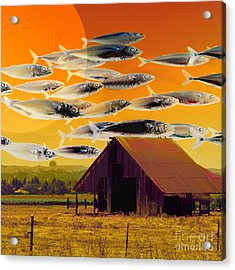 The Fish Farm 5d24404 Square Acrylic Print by Wingsdomain Art and Photography