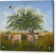 The Flatlanders Acrylic Print by Cynthia Barrow