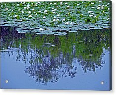 The Forest Beneath The Lilypads Acrylic Print by Jean Hall