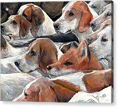 Fox Play Acrylic Print by Donna Tucker