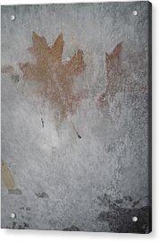 The Frozen Autumn Acrylic Print by Guy Ricketts