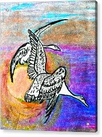 The Geese Acrylic Print by Jo-Ann Hayden