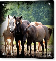 The Girls Acrylic Print by Rabiah Seminole