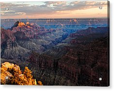 The Grand Canyon Acrylic Print by Alexis Birkill