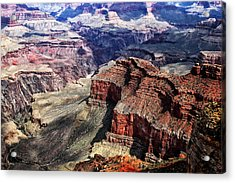 The Grand Canyon V Acrylic Print by Tom Prendergast