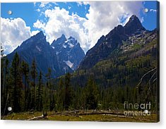 The Grand Tetons  Acrylic Print by Terry Horstman