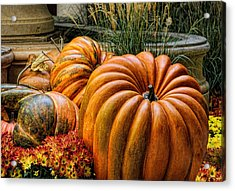 The Great Pumpkin Acrylic Print by Tammy Espino
