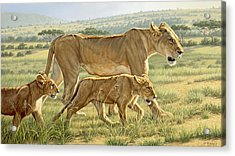 The Hunting Lesson Acrylic Print by Paul Krapf