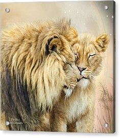 The Kiss Acrylic Print by Carol Cavalaris
