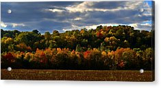 The Layers Of Autumn Acrylic Print by Julie Dant