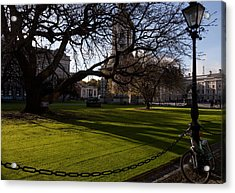 The Library Square, Trinity College Acrylic Print by Panoramic Images