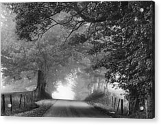 The Light Ahead Acrylic Print by Andrew Soundarajan
