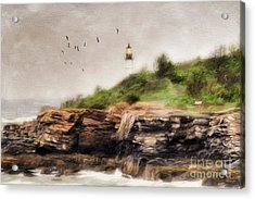 The Light Will Guide You Acrylic Print by Darren Fisher