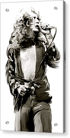 The Lion  Robert Plant Acrylic Print by Iconic Images Art Gallery David Pucciarelli