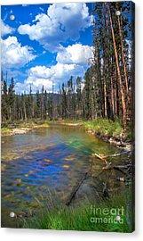 The Little Redfish Creek Acrylic Print by Robert Bales