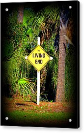 The Living End Acrylic Print by Carla Parris