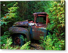 The Lost Delivery Acrylic Print by Ron Haist