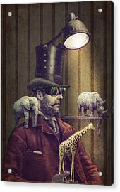 The Miniature Menagerie Acrylic Print by Eric Fan