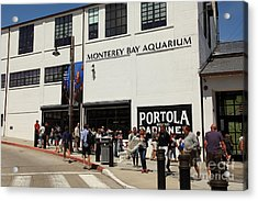 The Monterey Bay Aquarium On Monterey Cannery Row California 5d25015 Acrylic Print by Wingsdomain Art and Photography