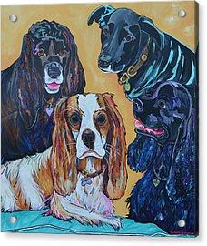 The Moseley Gang Acrylic Print by Patti Schermerhorn