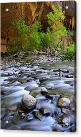 The Narrows A Place To Pause Acrylic Print by Bob Christopher