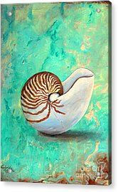 The Nautilus Acrylic Print by Gabriela Valencia