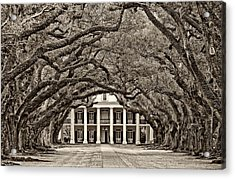 The Old South Sepia Acrylic Print by Steve Harrington