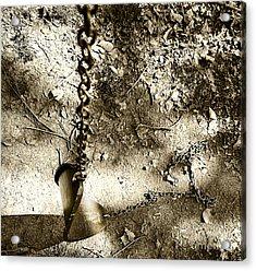 The Old Swing Acrylic Print by John Debar
