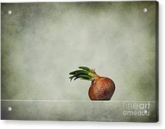 The Onions Acrylic Print by Diana Kraleva