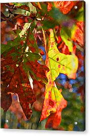 The Painted Season Acrylic Print by Susan Leggett