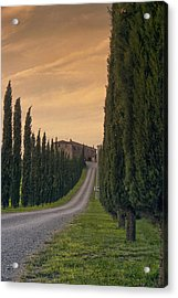 The Path Home Acrylic Print by Andrew Soundarajan