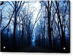The Path Acrylic Print by Off The Beaten Path Photography - Andrew Alexander
