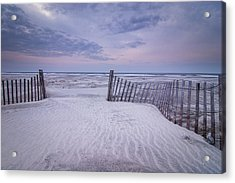 The Pathway Acrylic Print by Steve DuPree